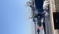 CORONAVIRUS/ Allo studio del Comune misure di sostegno ai pescatori, provatissimi dall'emergenza. Si valuta la possibilità di far uscire in Mare alcuni pescherecci