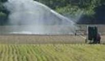 Agricoltura/ No all'aumento del costo dell'acqua da irrigazione a Taranto.