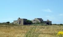 ECONOMIA/3 - La Regione Puglia premia il Gal Terre del primitivo. Oltre 6 milioni di euro per il gruppo di azione locale che abbraccia le province di Taranto e Brindisi