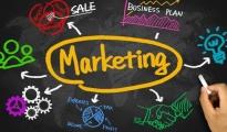 L'APPUNTAMENTO/ Web marketing e le nuove opportunità in agricoltura. Se ne parlerà domani a Brindisi
