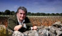 CONFAGRICOLTURA - Vendemmia 2016, una sorsata di ottimismo per la produzione di vino Doc Primitivo di Manduria
