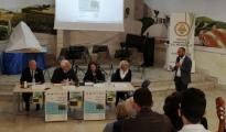 RIPARTENZE/ L'Auditorium della scuola Pignatelli di Grottaglie torna a nuova vita tra musica, letteratura e arte