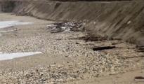 AMBIENTE/ Confcommercio Taranto lancia l'allarme, l'erosione sbriciola 50km di costa
